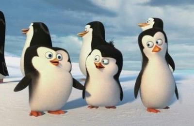 Pingwiny z Madagaskaru – wyjazd do kina